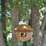 Songbird Essentials Round Hanging Grass Roosting Pocket