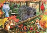 Outset Media Games Eastern Woodlands 35 Piece Framed Puzzle