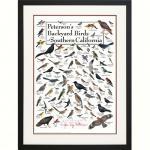 Steven M. Lewers & Associates Peterson's Backyard Birds of Southern California Poster