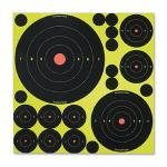 Birchwood Casey VP5 Shoot-N-C Variety Round Pk