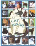 Lucy Hammett Cat Bingo
