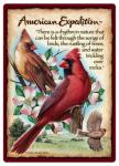 American Expeditions Cardinal Playing Cards