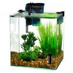 Vertex Desktop Aquarium Kit