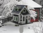 Home Bazaar Greenacres House - Green/White/Black