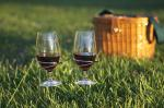 Picnic Plus Stainless Steel Wine Glass Holders